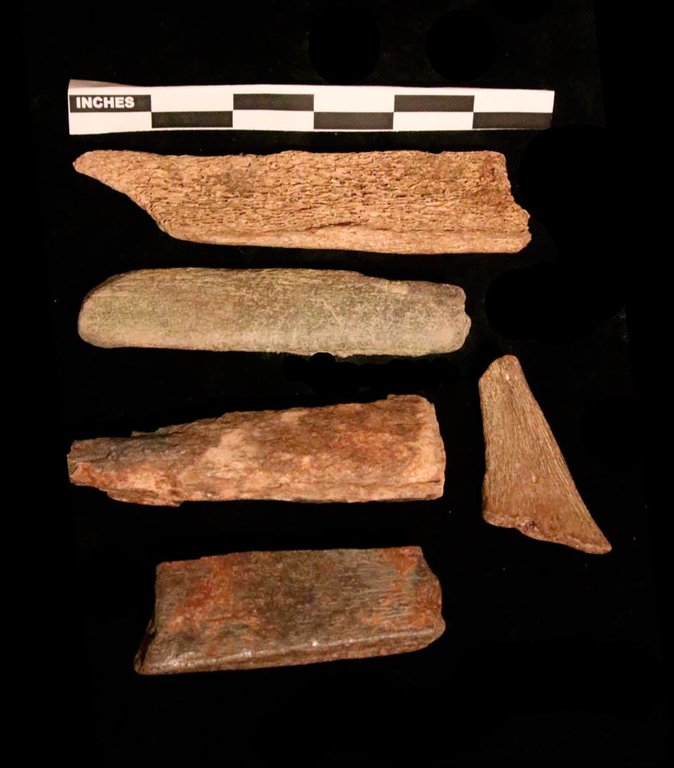 whalebone trade material.jpg