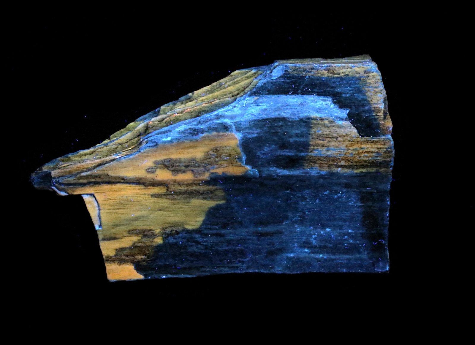 Petrified Wood Under UV