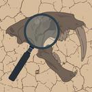 Paleo Analysis