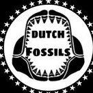 DutchFossils