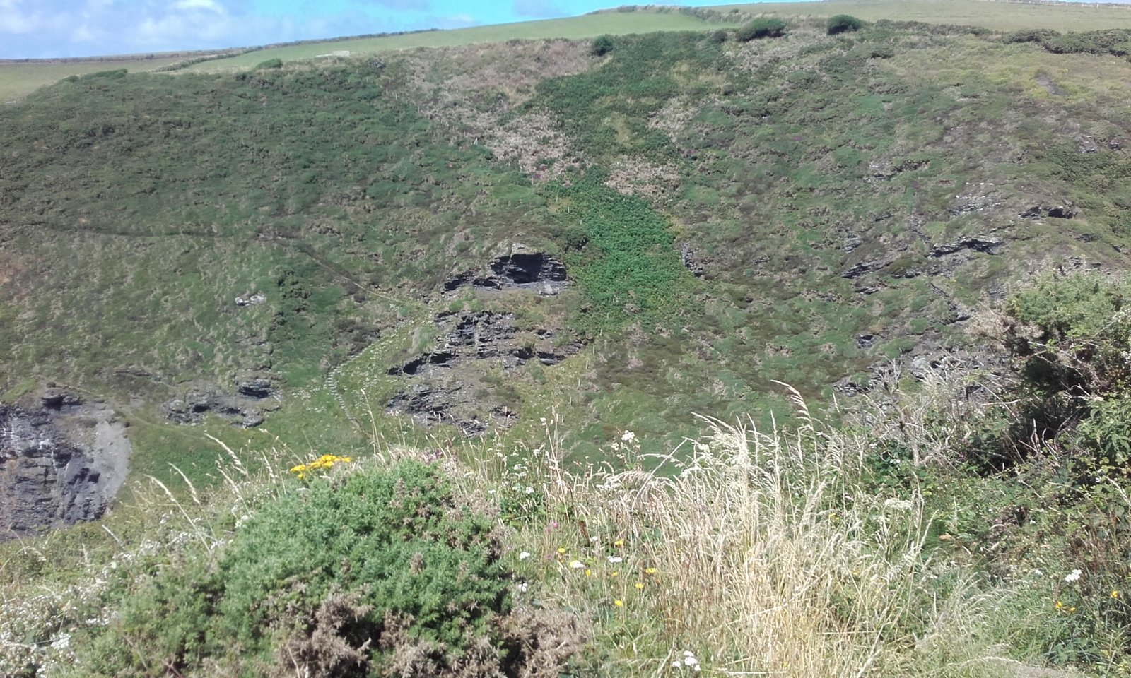 Crackington Formation Cliffs.