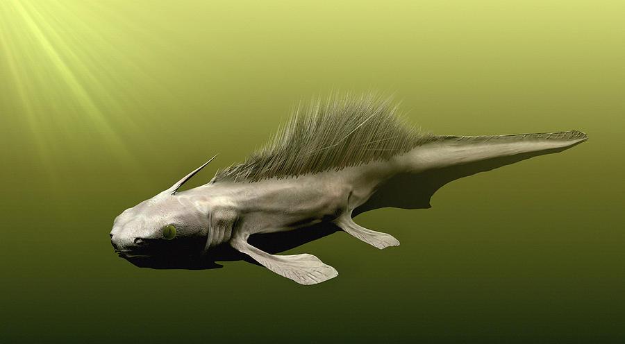 listracanthus-shark-christian-darkin.jpg.087cfe546bd53bda577e99e484d1c65d.jpg