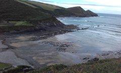 Crackington Formation Cliffs.