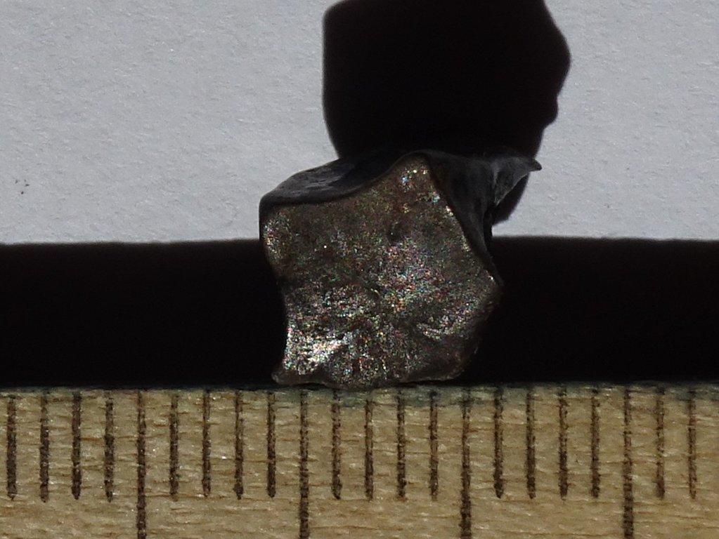 DSC02250.thumb.JPG.86f071e1300494c4de4b97600fc27c51.JPG