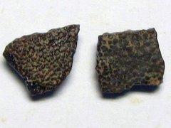 Megaloolithus siruguei (Vianey-Liaud et al. 1994)