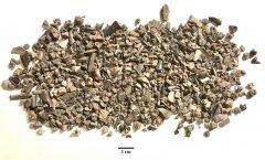 Permian microfossils