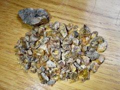 Amber (Tukwila Fm./Renton Fm. [Boundary], Middle to Late Eocene)