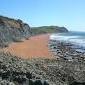 Dorset_Steve