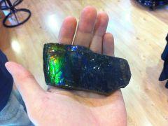 Ammolite Free-Form (Dominant Blue - Green) 02