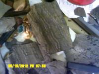 post-11723-0-43359500-1368674315_thumb.jpg