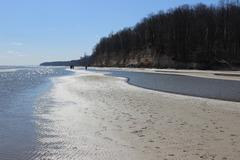 Low tide at Calvert Cliffs