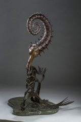 Heteromorphic Ammonite Left Side View