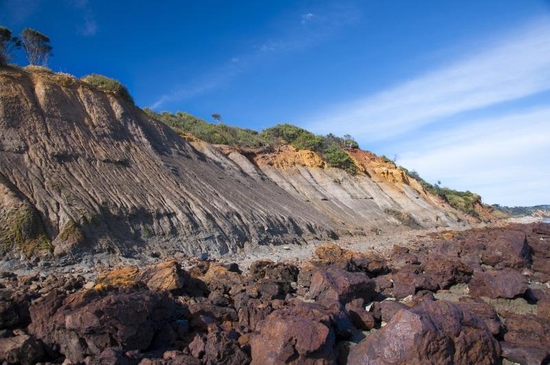 Fossil Beach.jpg