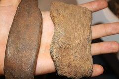 Medium Sized Bone Chunks