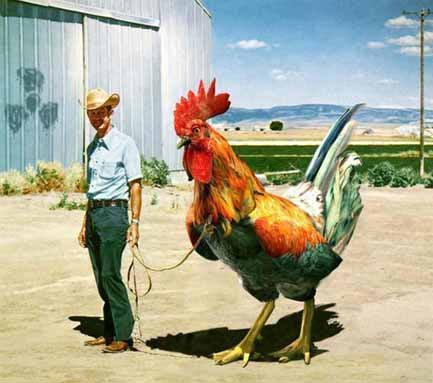Man-With-Giant-Chicken-Funny-Picture.jpg