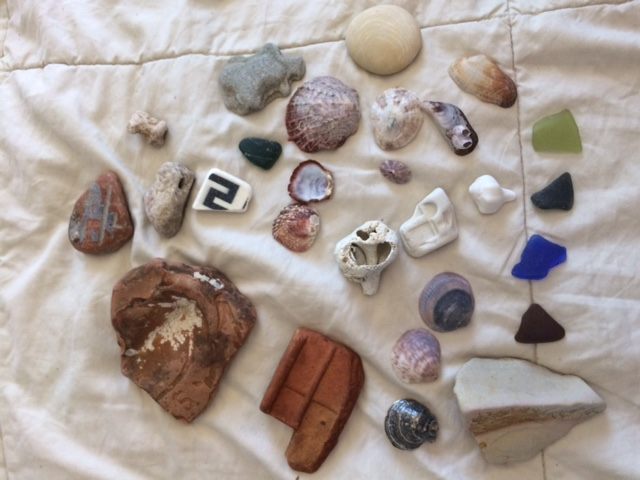A few of our Tel Aviv beach finds.png