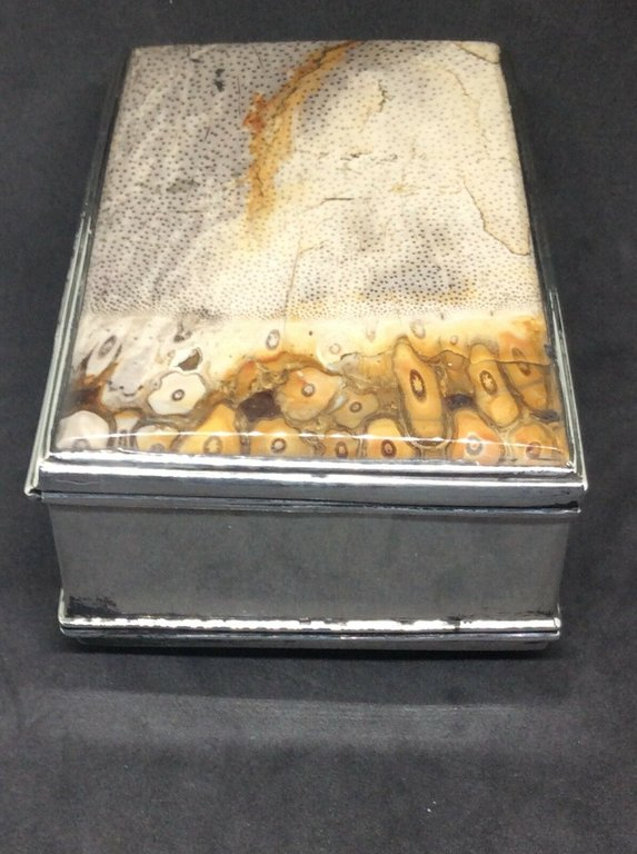 fossil snuffbox 8.jpg