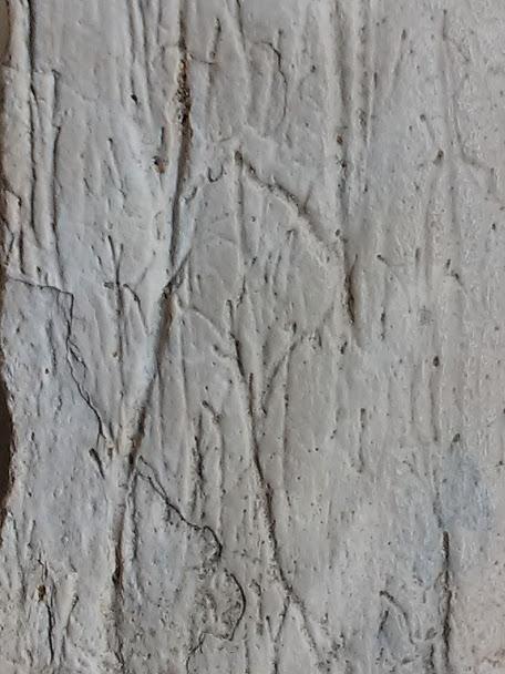 5d6068aaf0d4d_Closeupofdendriticgroovesbone.jpg.048c7ced70d84e29af7e295b0b710635.jpg