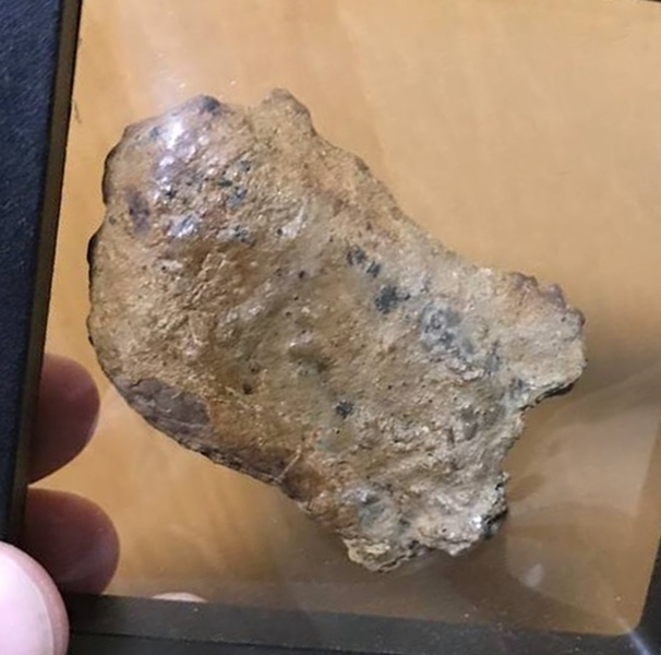 18_ankylosaurus_scute_by_tyrantking169_ddkvgia-pre.jpg
