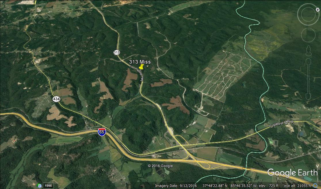 SR 313 Mississippian site.jpg