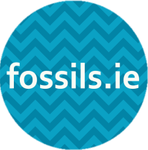 fossils.ie