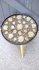 Ammonite table.