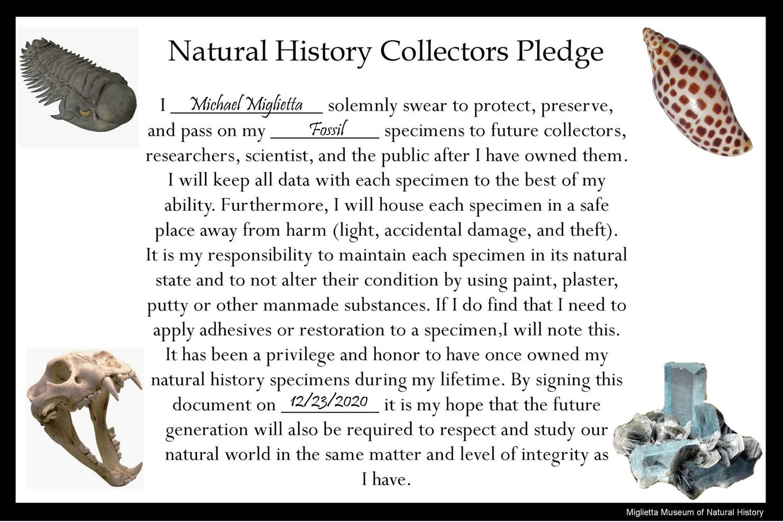 NH pledge01.jpg