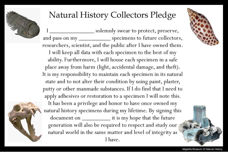 NH pledge.jpg