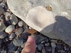 Vertebra in a rock