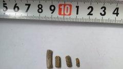 Ulyanovsk Pentacrinus stem fragments