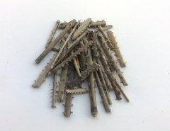 Fili echinoid spines