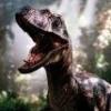 Raptor Lover